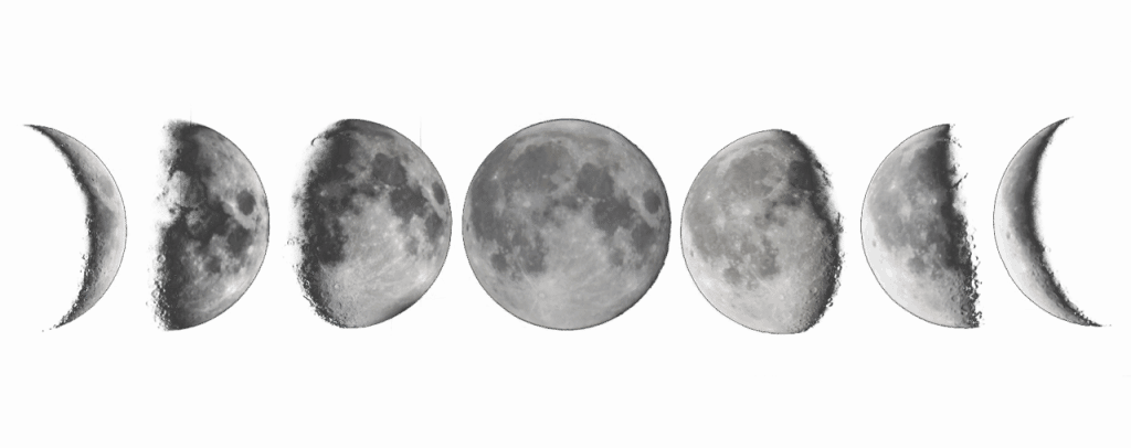 phases-of-the-moon-png.png